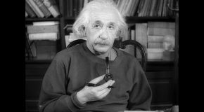 Albert Einstein de sa naissance à sa mort, belle découverte