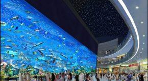 Les centres commerciaux les plus incroyables au monde