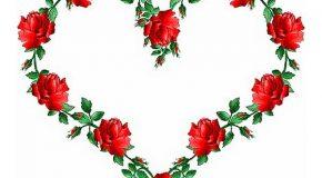 Le cœur peut être une fleur qui fait plaisir à voir, à découvrir pour comprendre