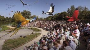 Belle découverte de l'adorable parc des oiseaux de Villars-les-Dombes en France