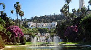 A la découverte du plus beau jardin d'Afrique, le jardin d'Essai d'Alger!