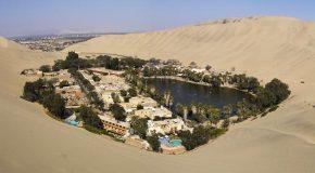 Les oasis, ces endroits insolites et magiques au milieu du désert