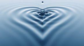 L'eau, la source de toute vie dans des clichés en tous genres!