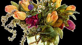 Vases, roses, fruits, musique… Pour les amis et les fans!