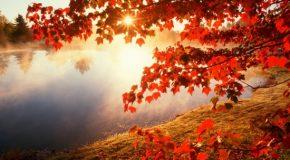 Sublimes paysages d'automne en Argentine