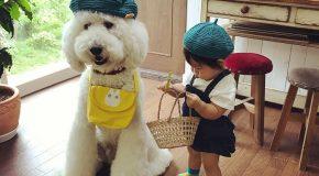 Les plus beaux amis du monde, une fillette et un caniche!