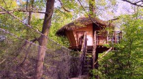 Cabanes dans les arbres et jolie chanson de Georges Brassens