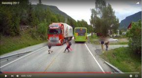 Un écolier traverse la route à l'aveuglette et faillit avoir un accident