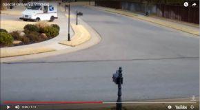 Un livreur tombe de sa camionnette et celle-ci percute un arbre