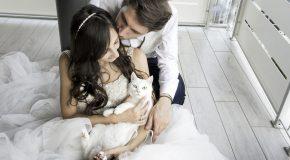 Séances photos avec des mariés et leurs chats, c'est si beau!