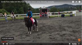 Un poney aide sa jeune maîtresse à tomber en douceur