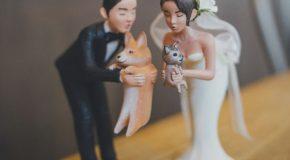 Un mariage sous le thème des chiens, une tendance qui séduit partout dans le monde!