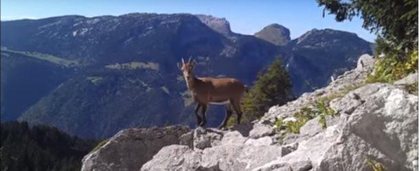 La Haute-Savoie dans une découverte qui plaira aux amoureux du voyage