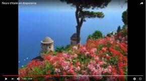 Des fleurs d'Italie et une chanson pour une journée agréable et douce