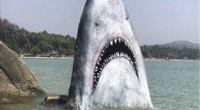 Un artiste sculpte un rocher en requin sur une plage en Inde
