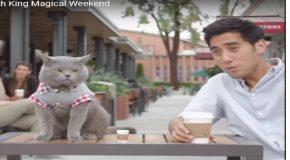 Un peu de magie avec un homme et le chat de son ami