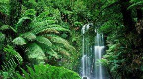 Voyage dans des endroits de rêve avec des clichés très agréables!