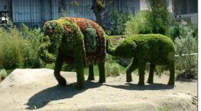 Sculptures végétales admirablement réussies, c'est impressionnant!