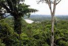 Superbe balade dans la nature en Equateur et magnifique musique!
