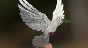 Un couple d'Indiens réalise des oiseaux en papier et c'est merveilleux