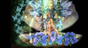 Des elfes et des fées, dans une adorable présentation  musicale