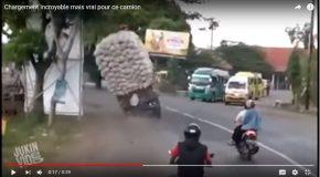 Un camion surchargé face aux lois de la logique!