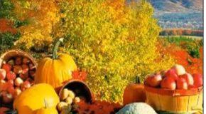 L'automne, une belle saison en couleur, juste pour changer de décor!