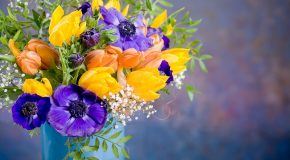 Des fleurs, un beau cadeau pour la journée mondiale des femmes