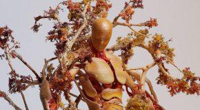Le projet «Seasons»de l'Américain Garret kane rend hommage à la nature