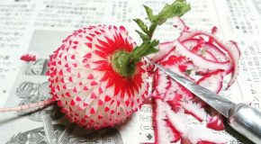 Superbes sculptures sur des fruits et légumes, c'est l'art du Mukimono!