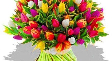 Des roses, des fleurs, de la musique et de la douceur!