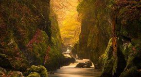 Quand la nature orne les paysages de différents aspects