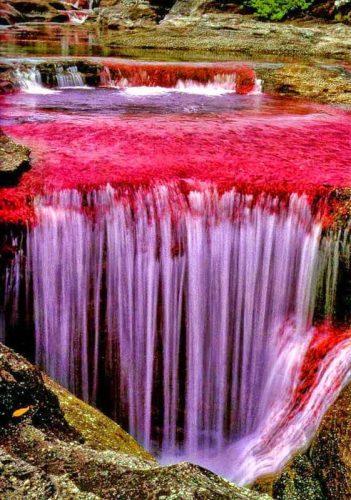 06-caño-cristales-rainbow-river