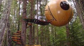 Une maison dans les arbres écologique existe, découvrez-là vite !