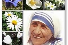 Mère Theresa des citations qui resteront à jamais gravées dans l'histoire de l'humanité