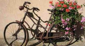 La bicyclette une passion et une histoire, que l'on ne connait pas forcément et que l'on doit découvrir
